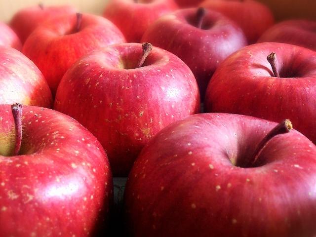 【40代ダイエット成功】やらなきゃ損!リンゴ酢ダイエットの凄い効果